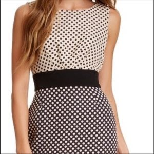 Tahari Polka Dot Shift Dress